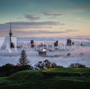 Auckland Mortgage Brokers